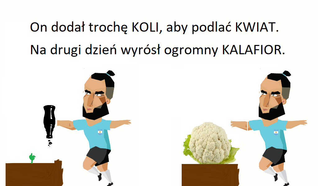 cauliflower - kalafior